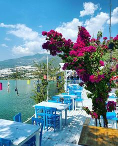 Beau Site, Turkey Travel, Al Fresco Dining, Antalya, Santorini, Pretty, Flowers, Istanbul, Viajes
