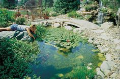 Looking to add a water garden to your Los Angeles backyard? Here are 3 crucial steps for a successful pond or pondless waterfall design.