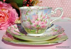 Royal Albert Travellers Joy Vintage Tea Cup Trio - Stock 2