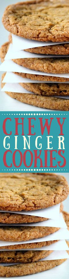 Chewy Ginger Cookies are the ultimate fall and holiday cookie, full of spices and molasses, they're easy to make and your whole house will smell amazing. ~ theviewfromgreatisland.com