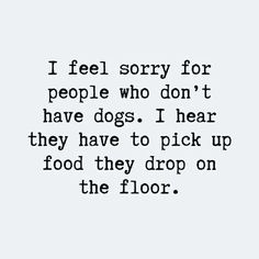 Are these Dog Quotes about me and my dog? - Funny Dog Quotes - new dog quotes hilarious words about not having a dog. The post Are these Dog Quotes about me and my dog? appeared first on Gag Dad. Best Dog Quotes, Cute Dog Quotes, Mom Quotes, Brother Quotes, Daughter Quotes, Father Daughter, Family Quotes, Quotes For Dogs, Pet Quotes Dog