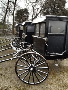 Amish buggies in the snow
