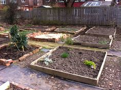Week 4-work progressing, some of beds dug in preparation for planting