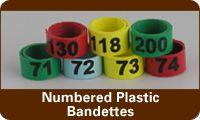 Numbered Plastic Bandettes