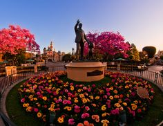 """Sunrise during hour 25 of """"One More Disney Day"""" at Disneyland!"""
