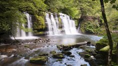 Waterfall Woods, Brecon Beacons, Wales