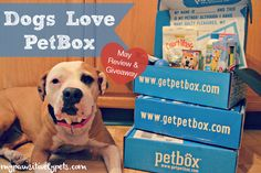 Dogs Love #PetBox   May Review and Giveaway   Pawsitively Pets#c7836381315706461708