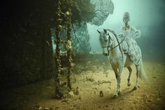 Austrian photographer and deep sea diving enthusiast Andreas Franke has released a new series titled Stavronikita Project: The Life Above Refined Below bei