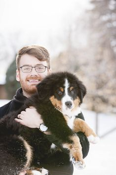 Man Holding Bernese Man Holding Bernese Mountain Dog Puppy Like Our Facebook Http Bit Ly Dog Family Portraits Bernese Mountain Dog Mountain Dogs