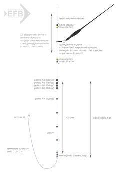 Montatura interessante e descritta in modo dettagliato da Ferruccio Gabba del team Tubertini. Abbiamo deciso di crearne una versione grafica per facilitarne la comprensione e la successiva...