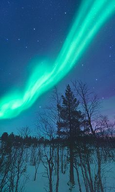 Night Mystic - Abisko, Sweden by - Dave Morrow -, via Flickr 2014 ~ wow such awesome colors