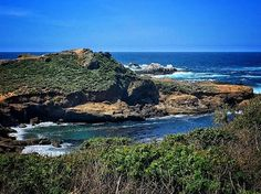 Point Lobos, Big Sur, California #bigsurlocals #montereybaylocals - posted by Rebecca Corvese https://www.instagram.com/mypglife - See more of Big Sur at http://bigsurlocals.com