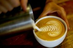 8 local cafes in Seattle that serve the best coffee and add to the culture of their neighborhoods.