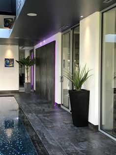 Artificial interior plants for an indoor swimming pool area. Tropical Artificial banana tree and pandanus plants in tall planters. Artificial Topiary, Artificial Plants, Gold Planter, Tall Planters, Topiary Trees, Indoor Swimming Pools, Vintage Planters, Faux Plants, Interior Plants