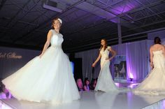 Photos: Inside the Dallas Bridal Show with 3,000 brides, Chihuahua wedding cakes