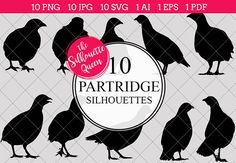 Lark Silhouette Vector Graphics includes PNG files with transparent backgrounds at The PNGs are approximately 10 inches at it's widest point. Silhouette Tattoos, Silhouette Clip Art, Animal Silhouette, Silhouette Studio, Animal Outline, Animal Cutouts, Animal Stencil, Silhouette Pictures, Cricut