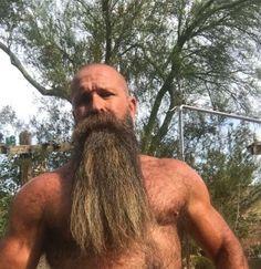 Your Daily Dose Of Great Beards ✔️from www.beardedmoney.com Bald Men With Beards, Bald With Beard, Great Beards, Long Beards, Awesome Beards, Hairy Men, Bearded Men, Badass Beard, Epic Beard