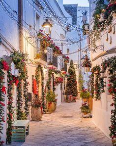 Christmas 2019 : Street in Locorotondo Italy Christmas Scenery, Christmas In Italy, Cosy Christmas, Christmas Pictures, Christmas Time, Christmas Crack, Xmas, Christmas Stuff, Christmas Decor