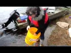 Video: Fiddlehead Foraging in New Brunswick, Canada - Eat Like a Girl