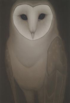 <3 What is it about owls that inspires some of the most beautiful art?