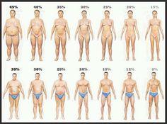 Men vs Women Body Fat Percentage