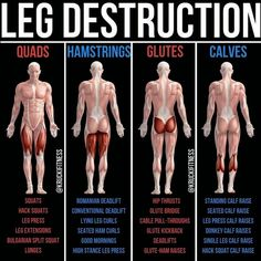 #gymguidercombigger #gymguidercom #biggerbuild #hamstrings #strengthen #exercises #thisbuild #strength #targeted #workout #problem #improve #muscles #flexors #bulgingBulging Bigger Legs Fast With This Workout - Bulging Bigger Legs Fast With This Workout - Strengthen and TONE your legs in this Legs and Glutes Workout. Targeted Muscles: - Glutes - Hamstrings - Hip Flexors - Quads - Calves - Core --- Do you want to improve core strength, but feel short on time and unsure of the best exercises to Fitness Workouts, Gym Workout Tips, Butt Workout, At Home Workouts, Fitness Tips, Fitness Motivation, Leg Press Workout, Calf Muscle Workout, Fitness Memes