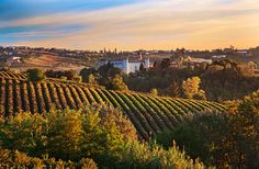 Langhe Roero Monferrato Piedmont, Italy