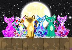 Colorful cats on a fence