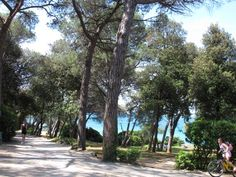 id – Just another WordPress site Croatia, Wordpress, Sidewalk, Pictures, Places, Walkway, Walkways