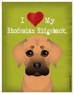 I Love My Rhodesian Ridgeback  I Heart My by DogsIncorporated, $20.00