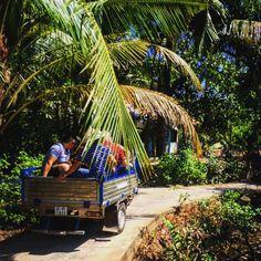 Balade au delta du Mekong #Vietnam #voyage
