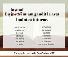 Dexonline promoveaza limba romana vorbita corect dexonline.net Romanian Language, Math For Kids, School Lessons, Grammar, France, Study, Education, Homeschooling, English