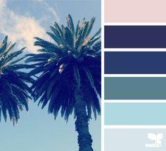 palm hues