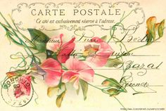 """Vintage postcards for creativity """"Flowers"""". Discussion on LiveInternet - Russian Service Online Diaries"""