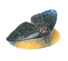 A. Walter  butterfly paperweight