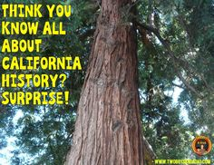 California History, California Dreamin', Free State, History Timeline, Interesting Facts, Fun Facts, Homeschool, Road Trip, Explore