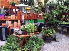 Centre jardin | LeVert Paysage | Botanix | Laurentides | Mont-Tremblant | botanix | Flowers | garden center | clay pots | pots