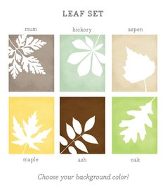 Bring the outdoors into your home with these classic leaf prints! Set in a crisp white silhouette against your background color of choice, each