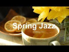 Spring Tea JAZZ - Sunny Bossa Nova March Music for Relaxing Morning - YouTube Lounge Music, New Beginnings, Apple Music, Good Movies, Jazz, Nova, March, Relax, Spring