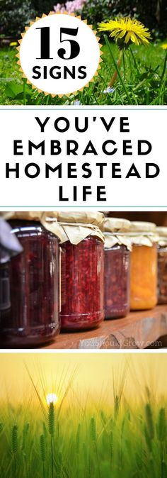 It takes a special kind of person to be a homesteader. But once you've embraced the homestead life, there's no going back. 15 signs you've embraced the homestead life. via /whippoorwillgar/