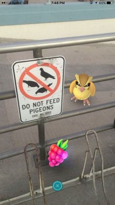 Do not feed..