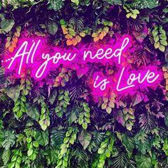 Personalized Neon Signs, Custom Neon Signs, Led Neon Signs, Wedding Letters, Wedding Signs, Party Wedding, Ideas Decoracion Salon, Light Green Walls, Love Neon Sign