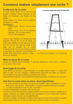 ruche apiculture plan ruchette dadant 6 cadres 1 1 ruche apiculture apiculture. Black Bedroom Furniture Sets. Home Design Ideas