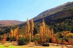 Clarens ..Vrystaatt !! Free State, Africa Travel, Golden Gate, South Africa, Art Projects, Beautiful Places, Scenery, African, Nature