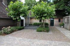 Siebers tuinprojecten tuin hovenier hortensia grind garage beuk