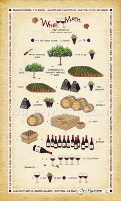 Makes you appreciate the farmer/grape grower and that bottle of wine even more! Wine Math by Jan Davidson
