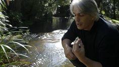 Film Construction - Let the River Flow Maori Art, Award Winning Books, 1940s Fashion, Filmmaking, The Book, Flow, Novels, River, American
