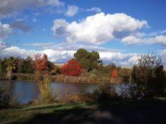 Color Island hart Park Bakersfield California