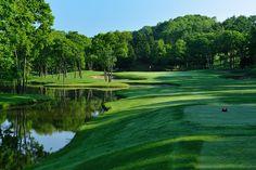 ニドム ゴルフ - Google 検索