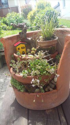 Minigarten in Tontöpfen